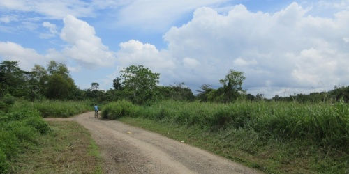 Sale of 6 Parcels of Vacant Land
